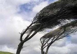وزش تند باد با سرعت ۹۴ کیلومتر بر ساعت در مشکین شهر