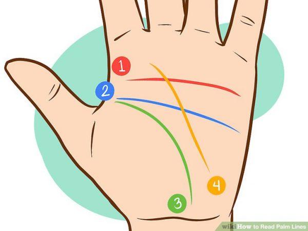 چگونه خطوط کف دست را بخوانیم؟