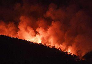 آتش گرفتن ۳۵۰ هکتار از اراضی کشاورزی در ایتالیا + فیلمبمباران آب برای خاموش کردن آتش در اراضی کشاورزی ایتالیا + فیلم