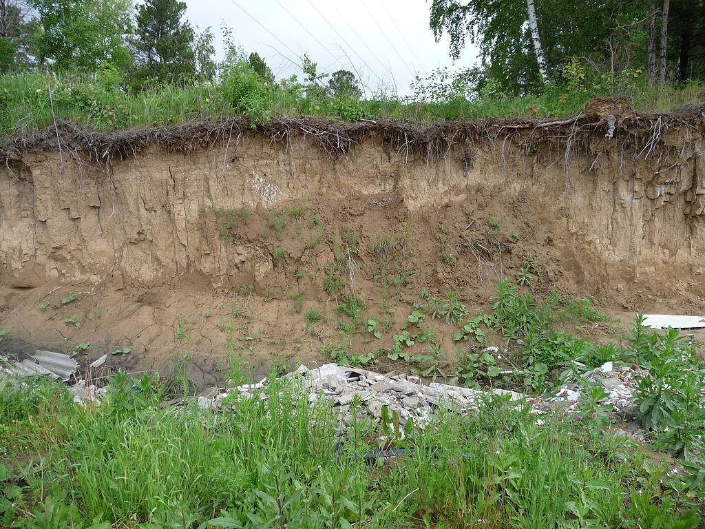 اجرای عملیات تثبیت خاک و جلوگیری از فرسایش در عرصه های طبیعی استان مرکزی