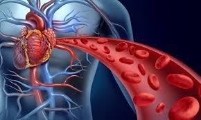 سیاستگذاری ویژه در خصوص کنترل بیماریهای قلبی و عروقی