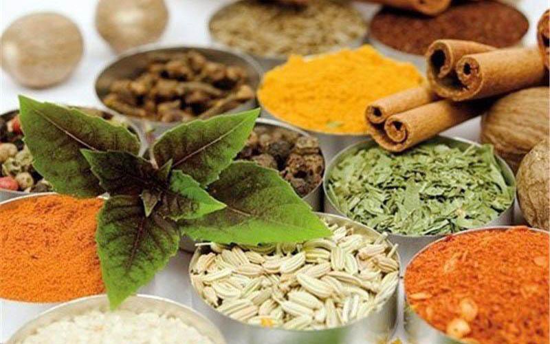 رشد ۵ برابری صدور مجوز فراوردههای طبیعی/ ۲۳۰ قلم از فرآوردههای طبیعی و داروهای گیاهی مجوز صادرات دارند