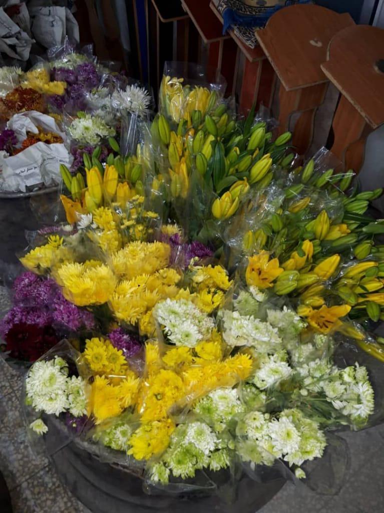 ۳۰۰۰ شاخه گل طبیعی برای گاآرایی روز ولادت حضرت زینب (س) به سوریه رسید+تصاویر