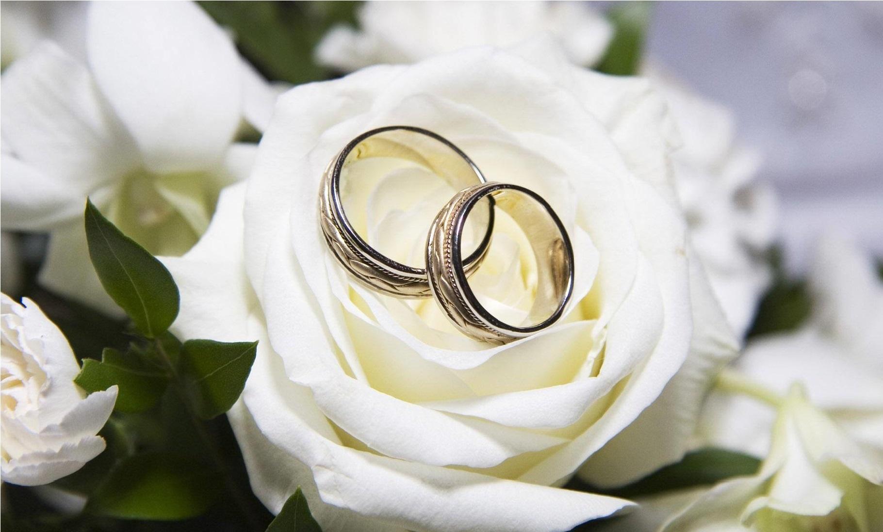 نمايندگي،آيات،بردار،خداوند،صالحي،آرامش،ازدواج،محبت،مودت