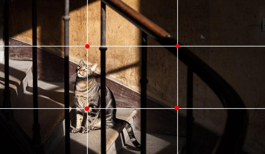 چگونه با دوربین گوشی هوشمند خود مانند یک عکاس حرفهای عکسبرداری کنیم؟ (قسمت دوم)