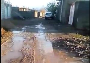 حمله وحشیانه با قمه به صاحب ساندویچی + فیلم / آبشار