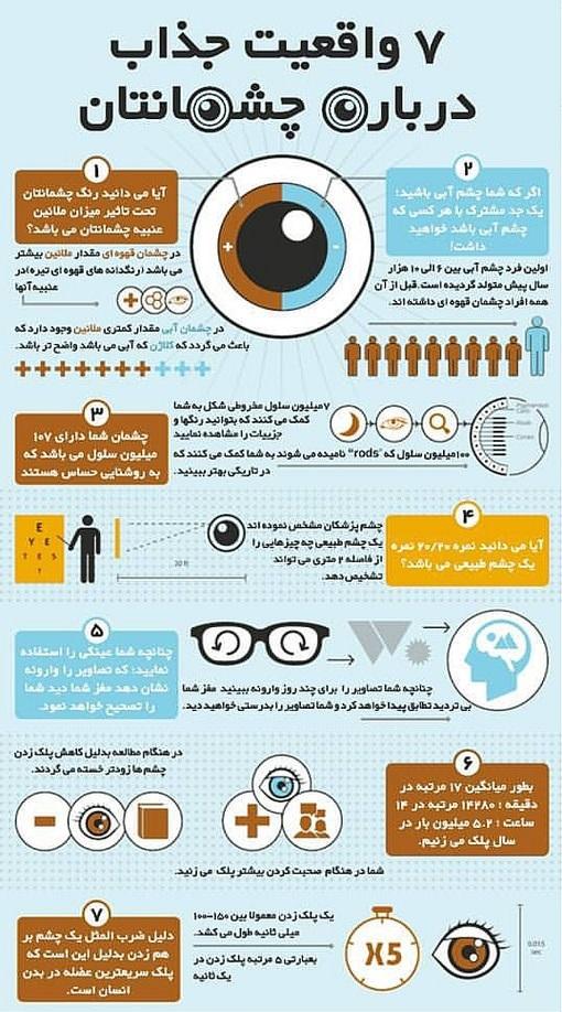 نکاتی عجیب ولی واقعی از دنیای چشم +اینفوگرافی