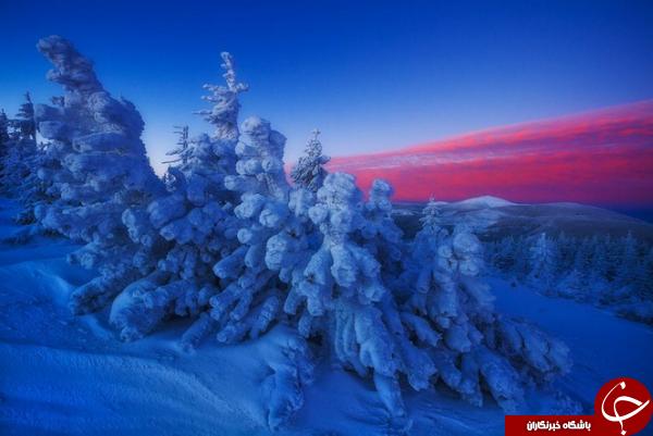تصویر روز نشنال جئوگرافیک از نلفیق رنگهای سرد و گرم در طبیعت لهستان