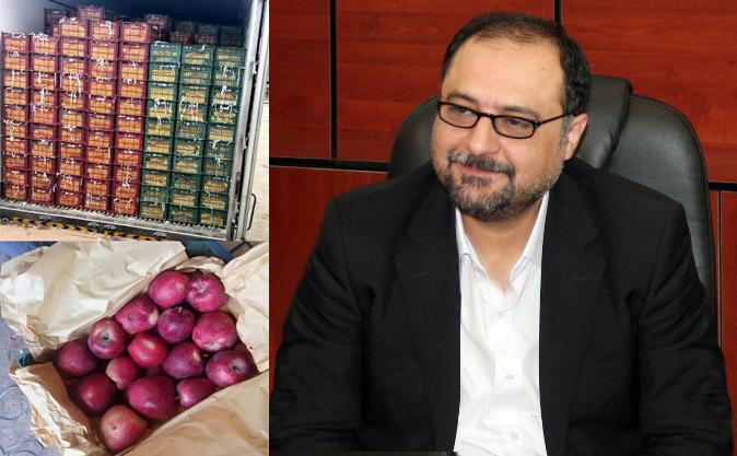 تأمین سیب درختی مورد نیاز طرح تنظیم بازار میوه نوروز ۹۸
