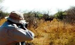 شکارچیان متخلف در دام محیط بانان گرفتار شدند / کشف دو قبضه اسلحه شکاری از متخلفین