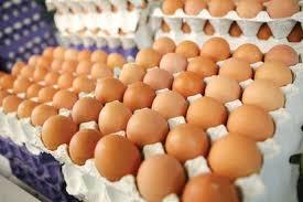 آخرین قیمت تخم مرغ در بازار+ جدول