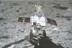 بذر پنبه، نخستین گیاهی که بر سطح ماه جوانه زد!