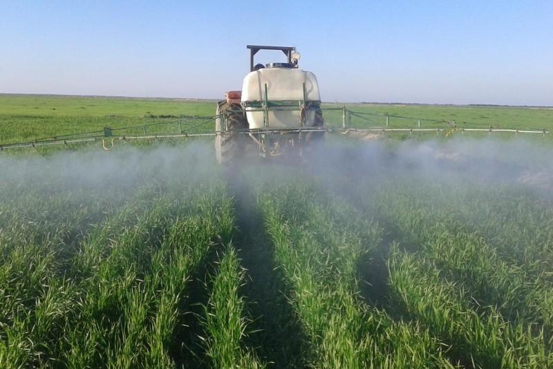 ظرفیت اشتغالزایی ۱۰ هزار نفری در حوزه تولید کودهای زراعی / چرا اختصاص ۶۰۰ میلیون دلار برای