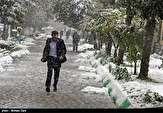 باشگاه خبرنگاران - بارش برف در استان ایلام آغاز می شود