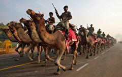 باشگاه خبرنگاران -تصاویر روز: از سخنرانی ترزا می پس از شکست توافق برکسیت تا رژه سربازان هندی بر روی شتر