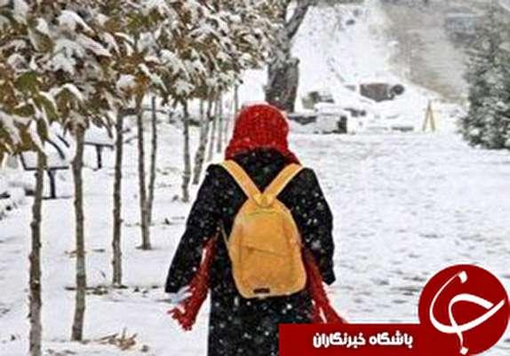 باشگاه خبرنگاران - مدارس همدان در نوبت صبح تعطیل شد/برگزاری امتحانات دانشگاه های همدان با تاخیر
