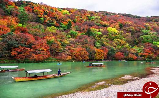 معرفی شهر کیوتو +بهترین زمان سفر و مناطق گردشگری
