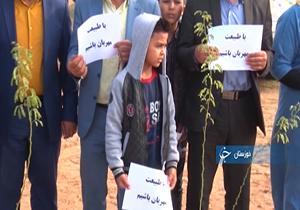 اجرای طرح «جنگلانه» در خوزستان + فیلم