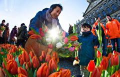 باشگاه خبرنگاران -تصاویر روز: از آغاز فصل رویش گلهای لاله در هلند تا اعتراض گسترده زنان آمریکایی به سیاستهای ترامپ