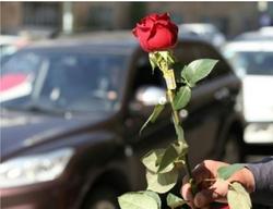 اقدام تحسین برانگیز جوانان تبریزی پس از بیحرمتی به دو دختر در پارک ائل گلی +عکس