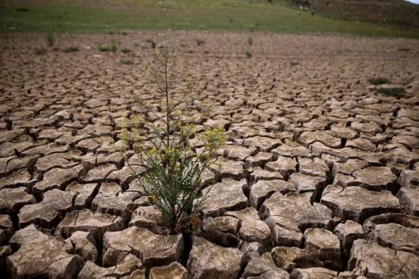 بارشهای موخر چقدر به کم آبی کشور کمک کرد؟