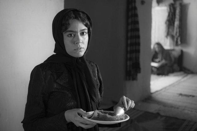 همه آنچه باید درباره فیلمهای جشنواره فجر بدانید + تیزر و تصاویر