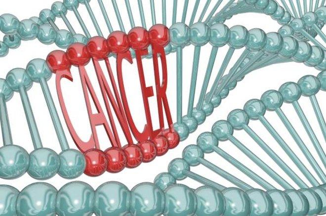 تخم مرغهای اصلاح ژنتیک شده؛ نسل تازه داروهای طبیعی درمان سرطان