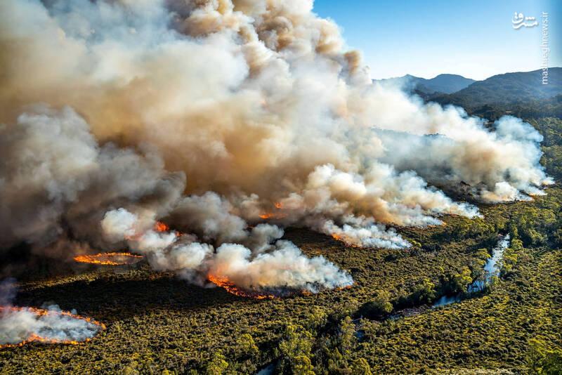 گرمای بی سابقه در استرالیا +تصاویر