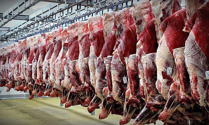کشف ۷ هزار کیلو گرم گوشت احتکار شده در تهران