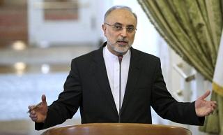 ایران در همه زمینههای هستهای قادر به «طراحی» است