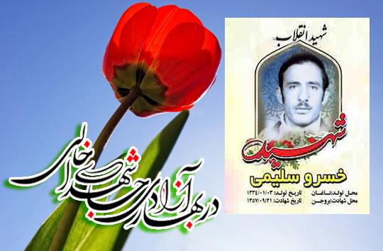 زندگینامه شهید انقلاب اسلامی؛ خسرو سلیمی ناغانی