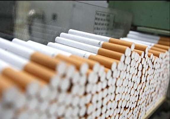 باشگاه خبرنگاران -کشف ۵۰ هزار نخ سیگار قاچاق در پاوه