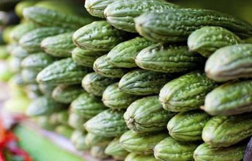 با مصرف روغن درخت چای درد دندان عقل را کاهش دهید/میوهای مفید برای رسیدن به وزن ایدهآل/چگونه از شر انگل در بدن رها شویم؟