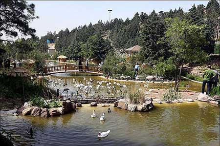 نظارت کامل سازمان محیط زیست بر باغ پرندگان