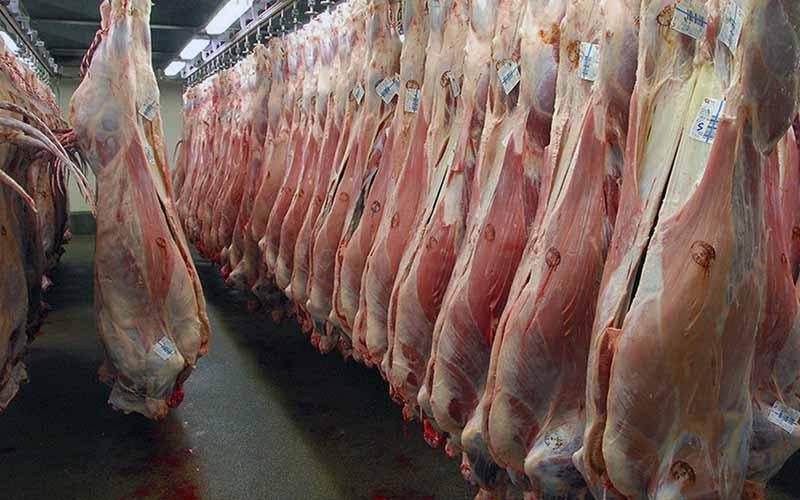 عرضه اینترنتی گوشت متوقف نشده است/ قاچاق عامل اصلی گرانی گوشت