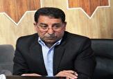 باشگاه خبرنگاران - جمع آوری سگ های ولگرد در شهرستان تفت