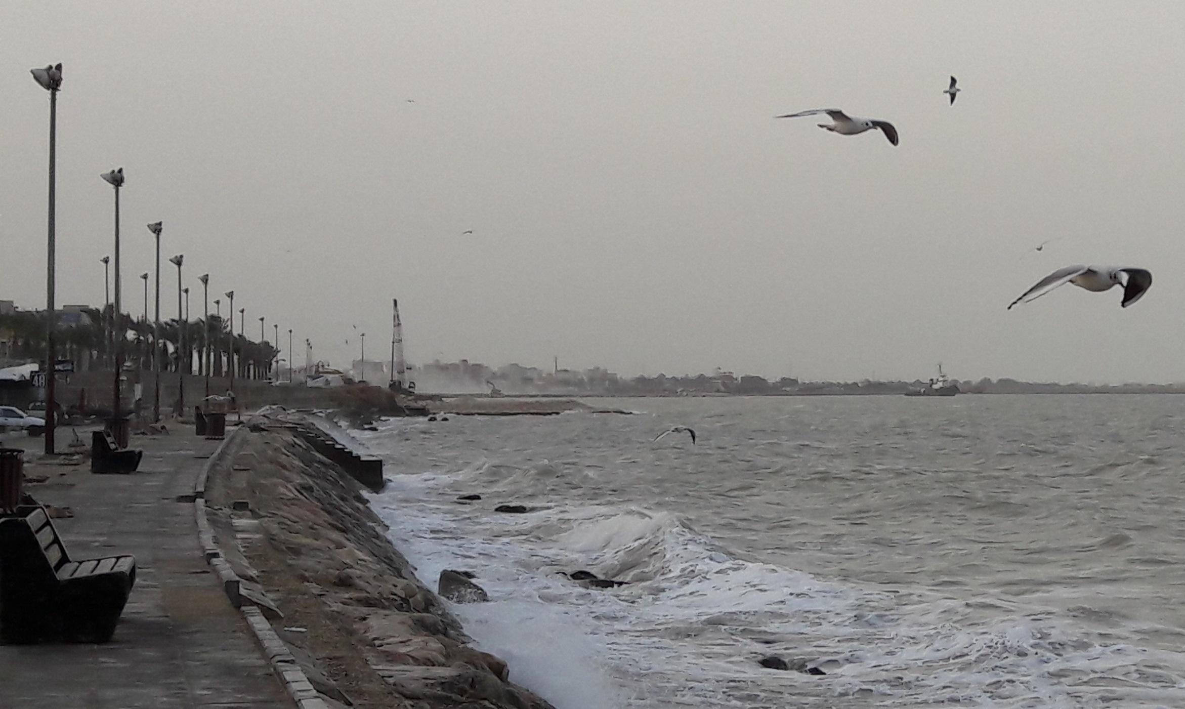 سامانه بارشی امشب میرود/ خلیج فارس تا چهارشنبه مواج است