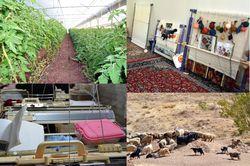 نگاه توانمند سازی به روستاهای حاشیه مشهد / مزیتهای منطقهای هر روستا، عامل مهمی در آبادانی