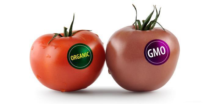 فرق محصولات ارگانیک با تراریخته + فیلم