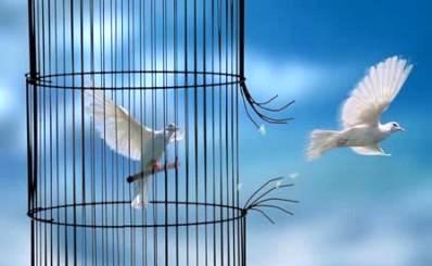 ۳۵۰ زندانی غیر عمد به کمک خیران آزاد شدند