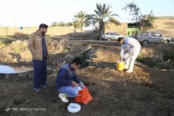 واکسیناسیون تب برفکی در روستای سید حسن الهایی