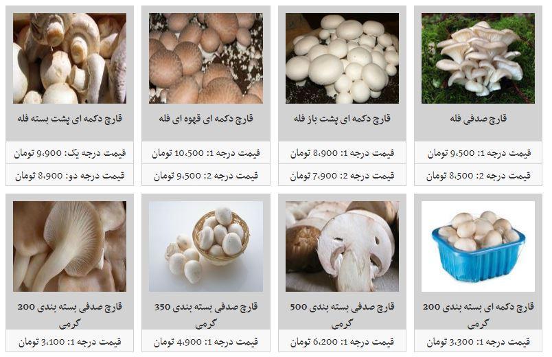 قارچ صدفی فله کیلویی چند؟
