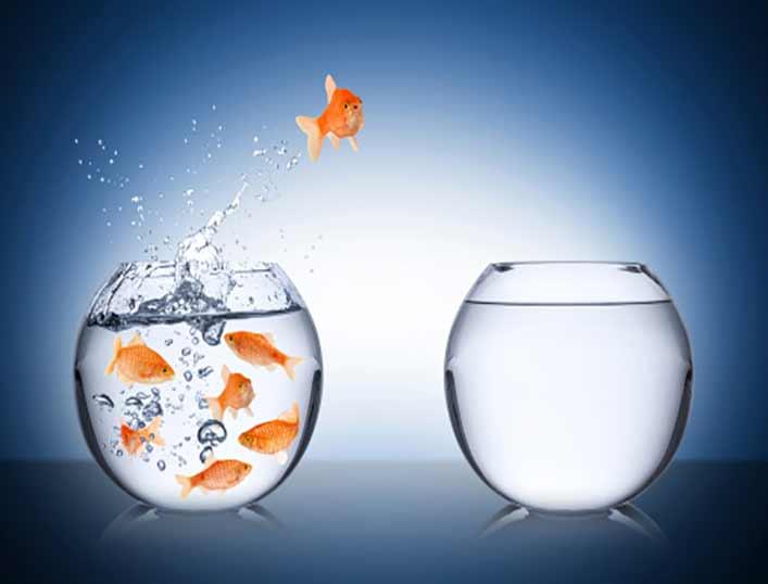 تست خودشناسی؛ آیا فرد جسوری هستید؟