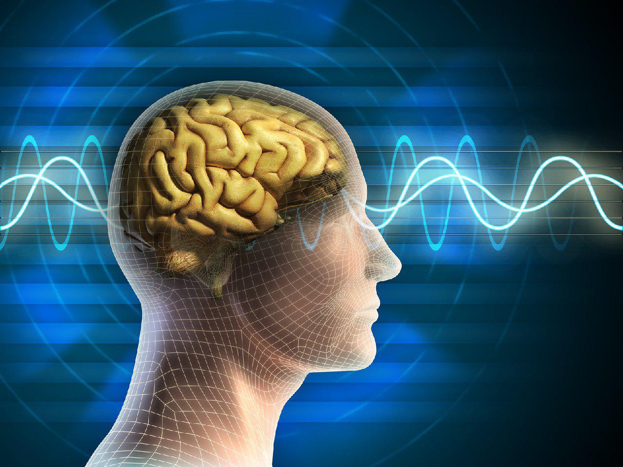 راهکارهایی برای پیشگیری از سکته مغزی/ سالانه حدود ۷۰ تا ۱۰۰ هزار ایرانی گرفتار سکته مغزی میشوند