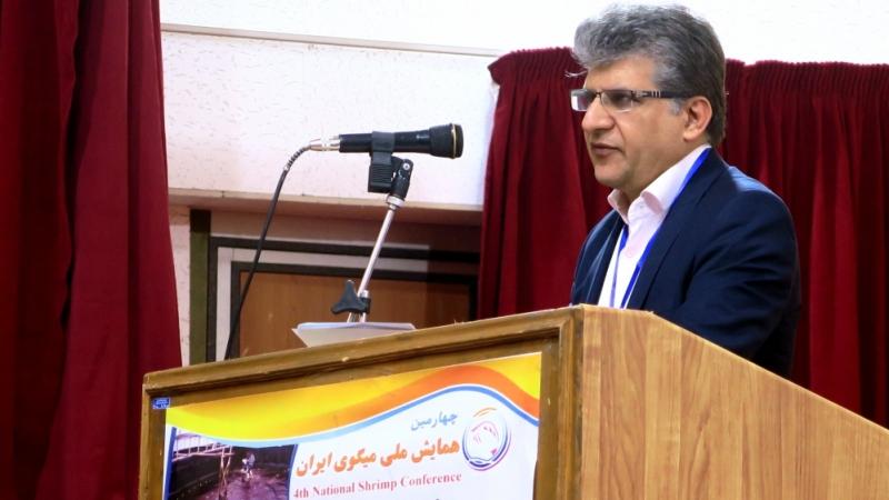 همایش ملی میگوی ایران در بوشهر آغاز شد
