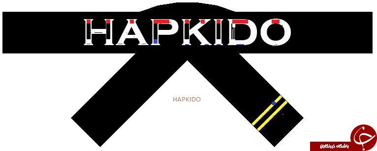 از تفاوت بین دو رشته رزمی آیکیدو و هاپکیدو چه میدانید؟