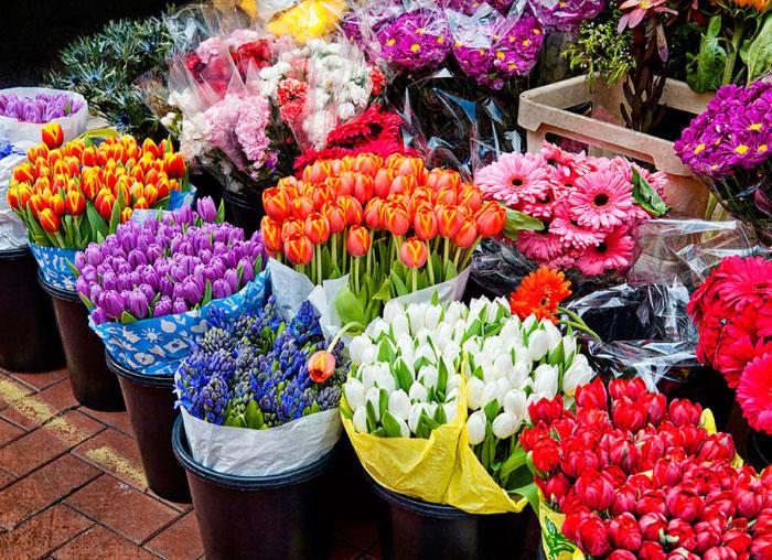 افت ۳۰ درصدی قیمت گل در بازار/امکان پیش بینی قیمت گل در بازار شب عید وجود ندارد