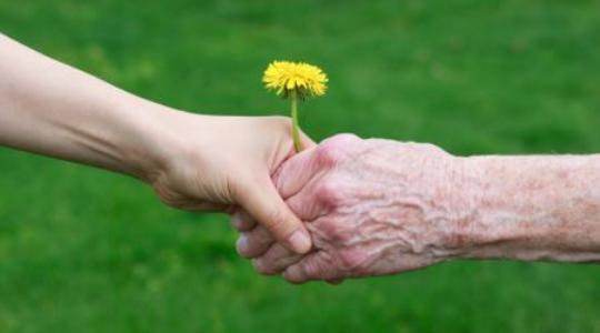 پیشگیری از آلزایمر با «سوتی پلو آذربایجان» / مصرف این غذای نشاط آور شما را از استرس دور میکند