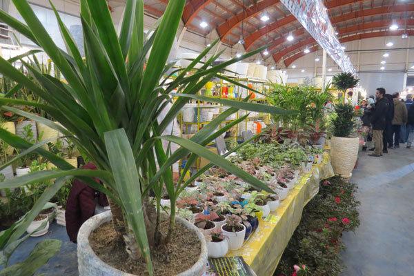 .افتتاح گلخانه و نمایشگاه گلهای زینتی و آپارتمانی در خمین