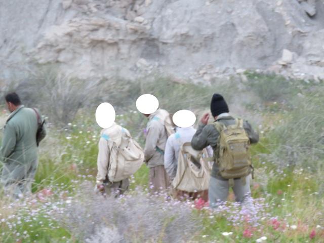 گروه حرفهای شکارچیان دستگیر شدند